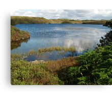Kiltooris Lough Canvas Print