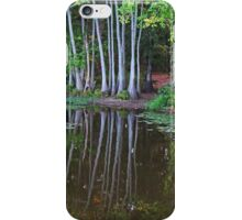 Lovely Escape iPhone Case/Skin