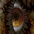 Eye 1 by tapiona
