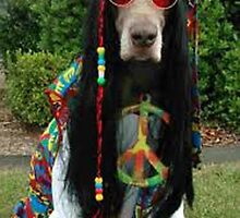 HIPPIE DUDE    'SUP DOGG ? by mando13