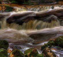 Campsie Glen (2) by Karl Williams