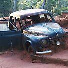Dusty Car by LESLEY B