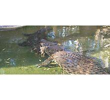 Crocs Australia Photographic Print