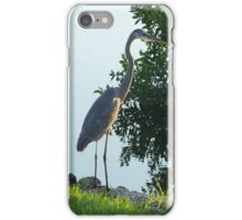Florida Crane iPhone Case/Skin