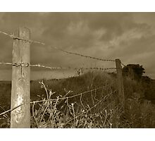 Barbed-wire fence Photographic Print