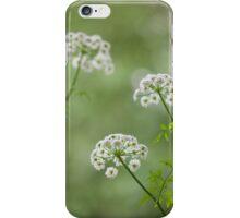 Summer Dreams iPhone case iPhone Case/Skin
