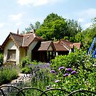 duck island cottage by Bronwen Hyde