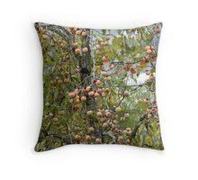 Persimmon Tree Up Close Throw Pillow