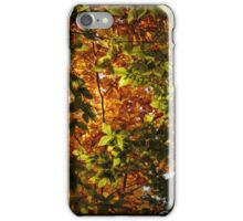 A Festival of Light and Color (iPhone Case) iPhone Case/Skin