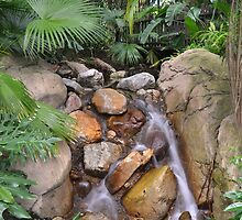 Disney's Animal Kingdom - waterfall by jdenny6055