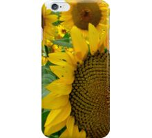 flowers in the sun... iPhone Case/Skin