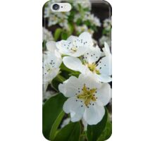 iphone case Blossom iPhone Case/Skin