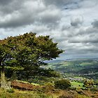 Looking over Whaley Bridge by cj1970
