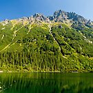 Morskie oko lake in the mountains by Dfilyagin