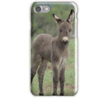 iphone donkey iPhone Case/Skin