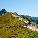 Tatra Mountains national park by Dfilyagin