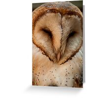 Barn Owl - Close up and personal Greeting Card