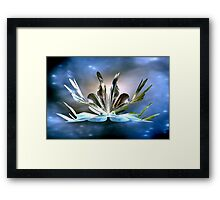 THE MYSTERIOUS UNIVERSE..DEC. 21TH 2012 ? Framed Print