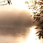 Misty River by Dale Lockwood