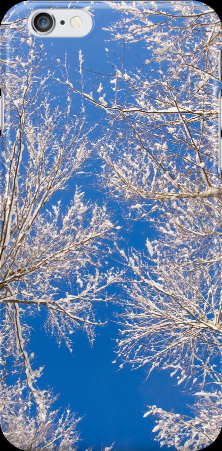Winter by Walter Quirtmair