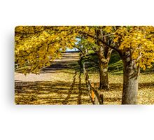 Redmond in fall set 101b Canvas Print