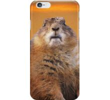 Who? Me? iPhone Case iPhone Case/Skin
