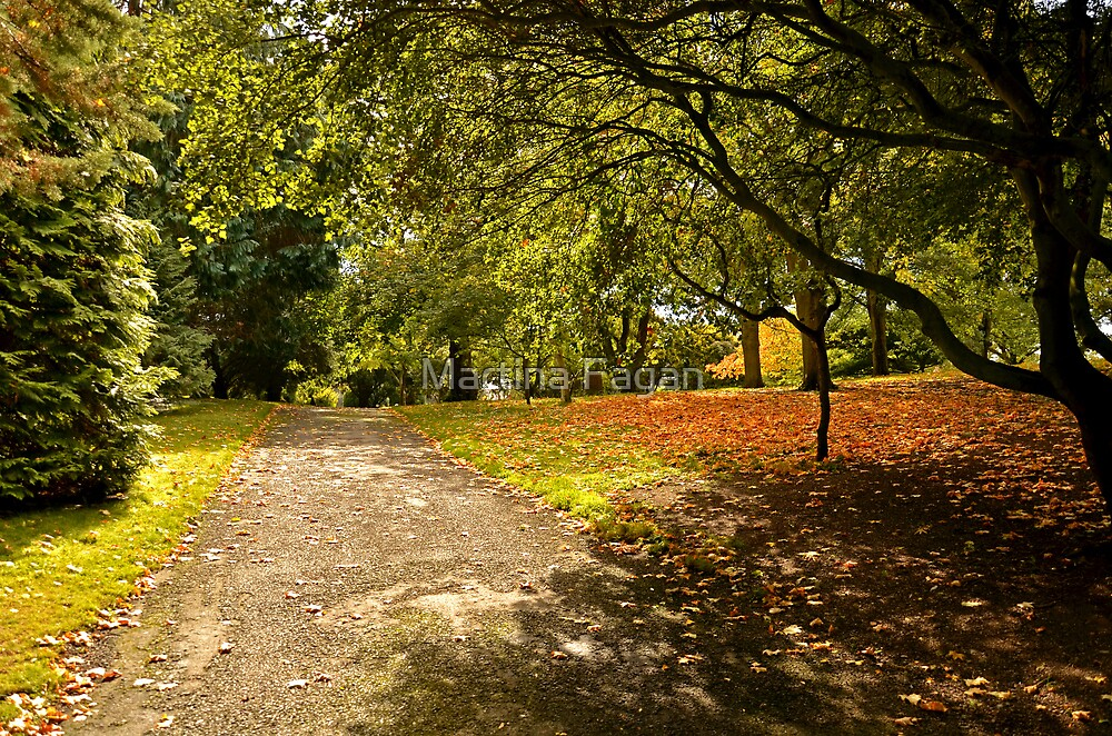 A Touch of Autumn by Martina Fagan