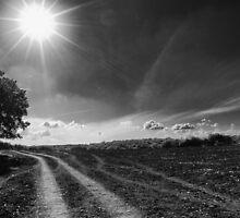Eerie Skies by Noam Gordon