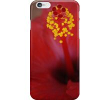 Hibiscus - iPhone Case iPhone Case/Skin