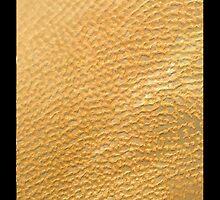 """""""Desert Sand - The Sahara"""" - phone by Michelle Lee Willsmore"""