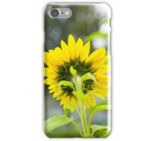 Backside of Sunflower iPhone Case/Skin