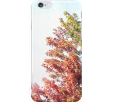 Fall Tree iPhone Case iPhone Case/Skin