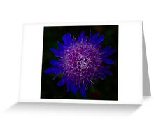 Chaotic Lilac Contumacy Greeting Card