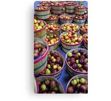 Fall Apples Canvas Print