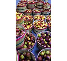 Fall Apples Photographic Print
