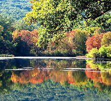 Laurel Lake in Autumn by AngieDavies
