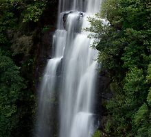 Big drop_Fitzroy Falls by Sharon Kavanagh
