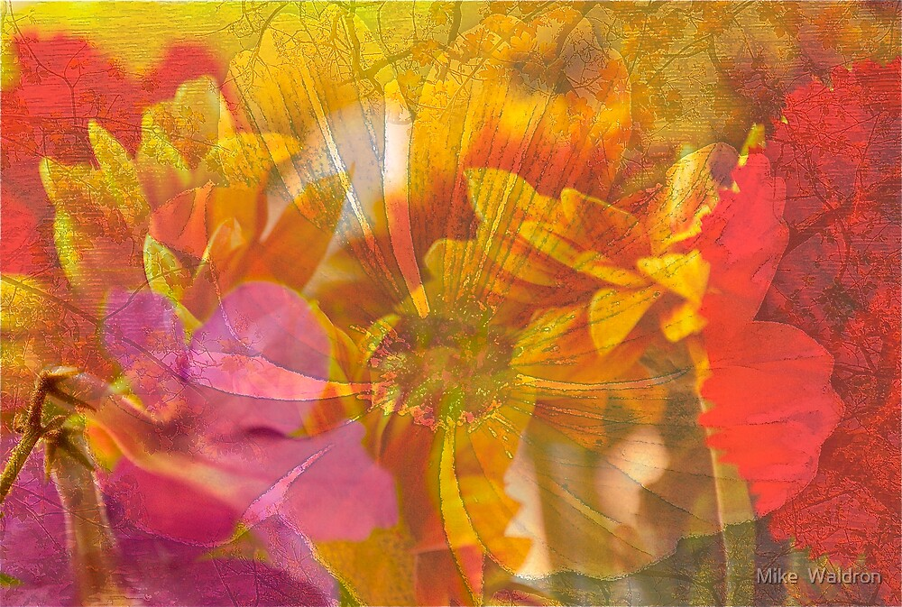 Flowers .. by Mike  Waldron