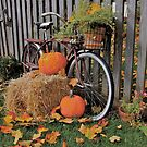 Autumn Bicycle by Ray4cam