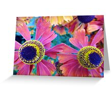 you can bring me flowers baby..... Greeting Card