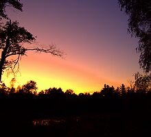 Benson's Sunset by SPPhotography