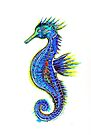 Sea Horse by Linda Callaghan
