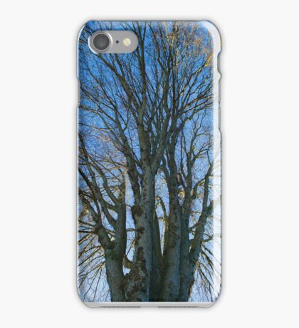 Dramatic Tree and Sky iPhone Case/Skin