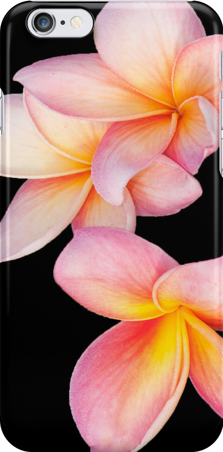 Tropical Bliss i phone cover by Jenny Dean