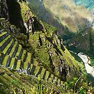 Images Of Peru - Machu Picchu (Terraces 1) by Rebel Kreklow