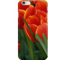 Tulips - iPhone Case iPhone Case/Skin
