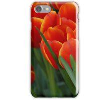 Tulips - iPhone Case iPhone Case/Skin