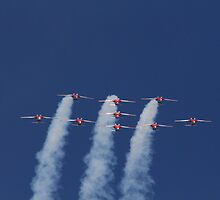 Snowbirds by fototaker
