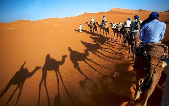 Shadows and Camels by citrineblue