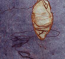 Eucalyptus Scribbles by Denise McDonald